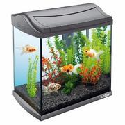 аквариум с крышкой 30 л